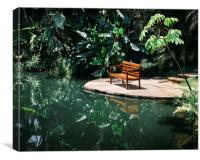 Bench in tropical forest, Canvas Print