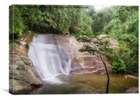 Waterfall in tropical rainforest, Canvas Print