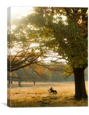 Relaxing Autumn Afternoon, Canvas Print