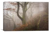 In the woods, Phillipstown - New Tredegar, Canvas Print