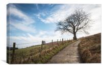 Lone tree - view towards Machen mountain, Canvas Print
