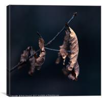 Oak Tree Leaves, Canvas Print