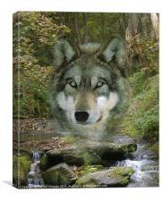 Wolf Spirit in The Rocky Valley