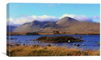 Black Mount, Lochan nah-Achlaise, Rannoch Moor, Canvas Print