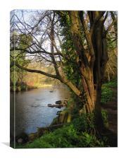 River Almond, Edinburgh, Scotland, Canvas Print