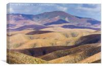 Rolling Hills of Fuerteventura, Canvas Print