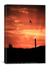 Crow Sunset, Canvas Print