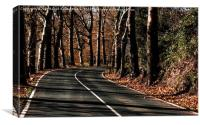 Road to Autumn, Canvas Print
