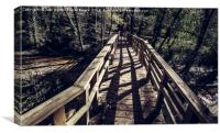 Footbridge leading to the forest, Canvas Print