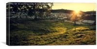 Sunbeams illuminated the field, Canvas Print