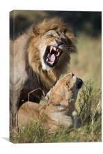Lovers' quarrel, Canvas Print