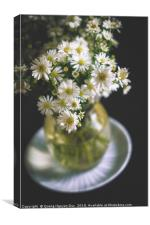 Daisy Vessel, Canvas Print