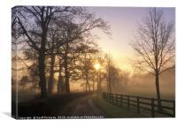 January Sunrise In Hampshire, Canvas Print