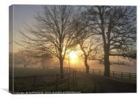 January Sunrise In Hampshire , Canvas Print