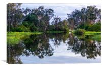 Flooded wetlands during the wet season, Canvas Print