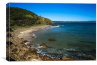 Little Wategos Beach, Canvas Print