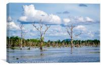 Siem Reap Lake, Canvas Print