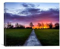 Purple sunrise, Canvas Print
