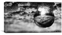 Snow in A Glass Ball      , Canvas Print