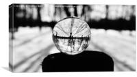 Winter Trees in a Glass Ball, Canvas Print