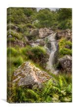 Beinglas Falls, Canvas Print