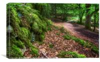 Laggan Wood, Canvas Print