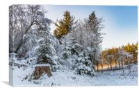 Beecraigs in the Snow, Canvas Print