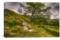 Oak Tree and Bench, Canvas Print