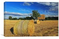 Straw Bales and Trailer, Canvas Print