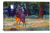 Red Deer on Richmond Common, Canvas Print