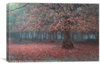 The Magical Forest, Canvas Print