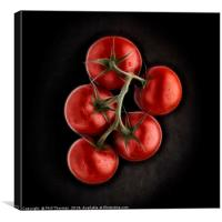Vine ripened tomatoes., Canvas Print