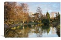 The Lake at Hatherley Park, Canvas Print