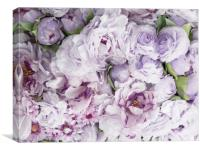 Violet Flowers, Canvas Print