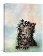 Messy Cat, Canvas Print
