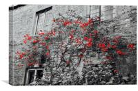 Red Flowers and monochrome stone cottage, Canvas Print