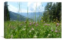 Meadow in the Alps, Canvas Print