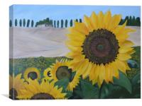 Tuscan Sunflowers, Canvas Print