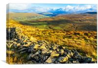 Dentdale from Middleton Fell, Canvas Print