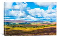 Wyresdale and Ward's Stone, Canvas Print