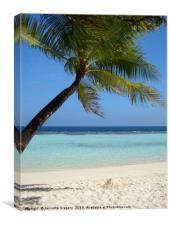 Maldives beach, Canvas Print
