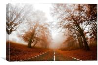 Road in fog, Canvas Print