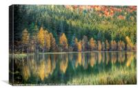 Autumn reflection, Canvas Print