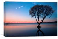 The Lonely Tree, Canvas Print