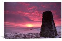 Blissful Dawn , Canvas Print