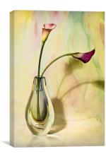 Floral Harmony , Canvas Print
