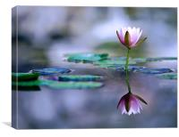Pastel Reflections, Canvas Print