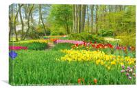Tulips at Keukenhof garden, Canvas Print
