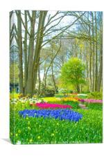 Spring flowers at Keukenhof gardens, Canvas Print