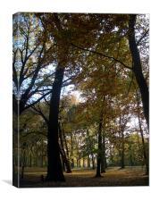 Autumn Walk , Canvas Print